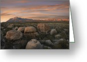 "\""guadalupe National Park\\\"" Greeting Cards - Boulders At Guadalupe Mountains Greeting Card by Tim Fitzharris"