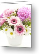 Chrysanthemum Greeting Cards - Bouquet of flowers Greeting Card by Elena Elisseeva