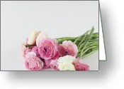 Ranunculus Greeting Cards - Bouquet Of Ranunculus Greeting Card by Elin Enger