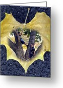 Adolescents Greeting Cards - Boys Climb Trees Greeting Card by Brian Wallace