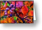 Morning Mist Images Greeting Cards - Bradford Pear in Autumn Greeting Card by Judi Bagwell