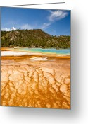 Prismatic Greeting Cards - Braided Spring Runoff Greeting Card by Adam Pender