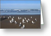 Feeding Greeting Cards - Breakfast At Cannon Beach Greeting Card by Will Borden