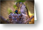 Mojave Greeting Cards - Breakfast Greeting Card by Robert Bales