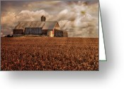 Red Barns Greeting Cards - Breaking Through Greeting Card by Lois Bryan