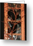 Window. Recycled Sculpture Greeting Cards - Breaking Through Greeting Card by Mariann Taubensee