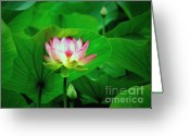 Lotus Leaves Greeting Cards - Breakthrough Greeting Card by Marion Cullen