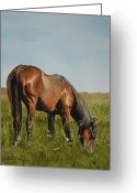 Bay Painting Greeting Cards - Breezy Greeting Card by Tina  Sander