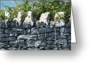 County Clare Greeting Cards - Briars and Stones New Quay Ireland County Clare Greeting Card by Teresa Mucha
