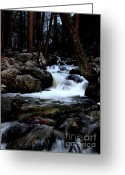 Yosemite Creek Greeting Cards - Bridalveil Creek at Yosemite Greeting Card by Wingsdomain Art and Photography