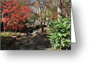 Cheekwood Gardens Greeting Cards - Bridge over Water  Greeting Card by Denise Ellis