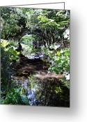 Irish Greeting Cards - Bridge Reflection at Blarney Caste Ireland Greeting Card by Teresa Mucha