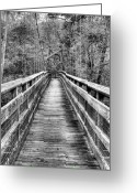 Gw Bridge Greeting Cards - Bridging the Seasons BW Greeting Card by JC Findley