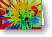 Diane Berry Digital Art Greeting Cards - Bright Flower Greeting Card by Diane E Berry