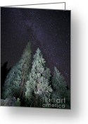 Nights Greeting Cards - Bright Night Greeting Card by Jeff Kolker