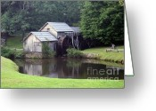Most Photographed Photo Greeting Cards - Bright Summer Days Greeting Card by Shannon Slaydon