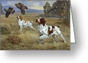 Pointing Greeting Cards - Brittany Spaniels Flush Three Birds Greeting Card by Walter A. Weber