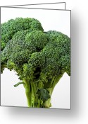 Brocolli Greeting Cards - Brocolli Greeting Card by Robert Ullmann