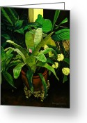 Tropical Gardens Greeting Cards - Bromeliad Greeting Card by Doug Strickland