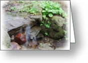 Digitally Processed Digital Art Greeting Cards - Brook falling over stones Greeting Card by Rob Fairbairn