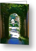 Light And Dark  Greeting Cards - Brookgreen Gardens Greeting Card by Beebe  Barksdale-Bruner