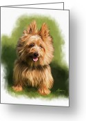 Cairn Terrier Greeting Cards - Brown Cairn Westie portrait Greeting Card by Michael Greenaway