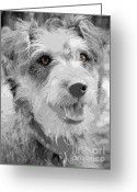Watch Dog Greeting Cards - Brown Eyed Dottie Greeting Card by Karen Lewis