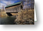 Scenic Byways Greeting Cards - Brownsville Covered Bridge - Brownsville Vermont Greeting Card by Erin Paul Donovan