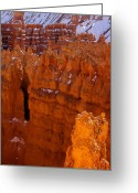 Inspiration Point Greeting Cards - Bryce Amphitheater Greeting Card by Viktor Savchenko