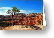 Elizabeth Rose Greeting Cards - Bryce Canyon National Park Greeting Card by Elizabeth Rose