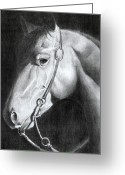 Western Pencil Drawing Greeting Cards - Bubba Greeting Card by David Ackerson