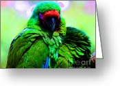 Amazon Parrot Greeting Cards - Bubbles  Greeting Card by Tap On Photo