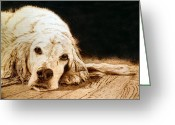 Dog Art Pyrography Greeting Cards - Buck Greeting Card by Adam Owen