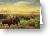 Buffalo Painting Greeting Cards - Buffalo Fox Great Plains American americana historic oil painting  Greeting Card by Walt Curlee