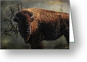 American West Greeting Cards - Buffalo Moon Greeting Card by Karen Slagle