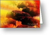 Extinction Greeting Cards - Buffalo Sun Greeting Card by Terril Heilman
