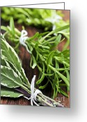Cutting Greeting Cards - Bunches of fresh herbs Greeting Card by Elena Elisseeva