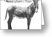 Cherry Drawings Greeting Cards - Burro of Love and Hope Greeting Card by Marianne NANA Betts