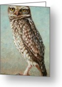 Feathery Greeting Cards - Burrowing Owl Greeting Card by James W Johnson