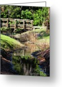 Florida Bridge Greeting Cards - Buschman Park Bridge Greeting Card by Deborah Benoit