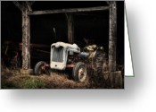 Old Barns Photo Greeting Cards - Buster Greeting Card by Thomas Schoeller
