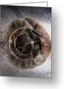 Brown Digital Art Greeting Cards - ...but How About Time Greeting Card by Gun Legler