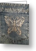 Abstract Art Tapestries - Textiles Greeting Cards - Butterfly background. Greeting Card by Panyanon Hankhampa
