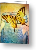 Insect Greeting Cards - Butterfly Blue Glass Jar Greeting Card by Bob Orsillo