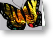 Autumns Mixed Media Greeting Cards - Butterfly Floral Collection  Greeting Card by Debra     Vatalaro