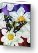 Feminine Greeting Cards - Butterfly Flowers Greeting Card by JQ Licensing