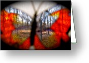 Vibrent Colored Landscape Greeting Cards - Butterfly Forest Greeting Card by Debra     Vatalaro
