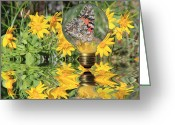 Post Card Greeting Cards - Butterfly In A Bulb II - Landscape Greeting Card by Shane Bechler
