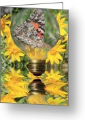 Light Bulb Mixed Media Greeting Cards - Butterfly In A Bulb II Greeting Card by Shane Bechler
