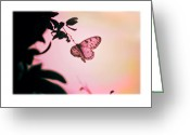 Cocoon Greeting Cards - Butterfly Greeting Card by Mal Bray